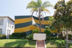 Termite Control Tampa Bay | Swat Exterminating